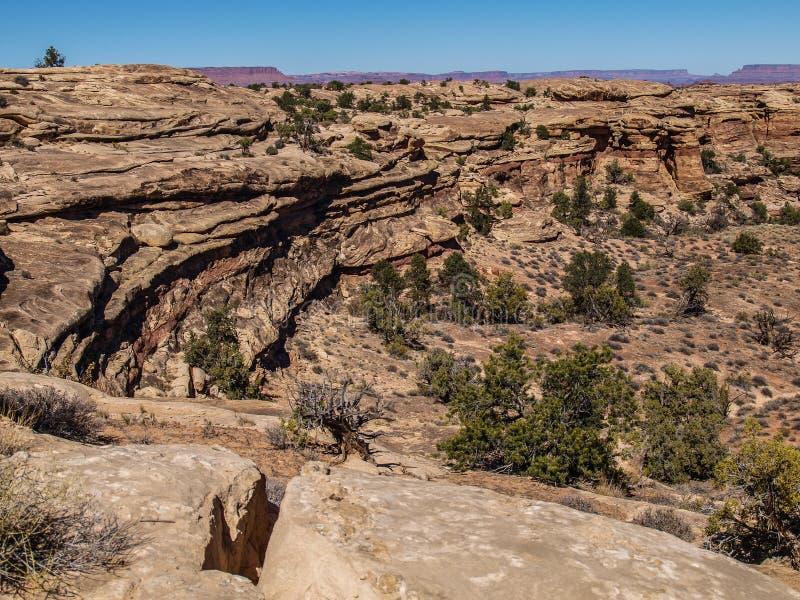 Rastro de Slickrock en el parque nacional de Canyonlands fotos de archivo