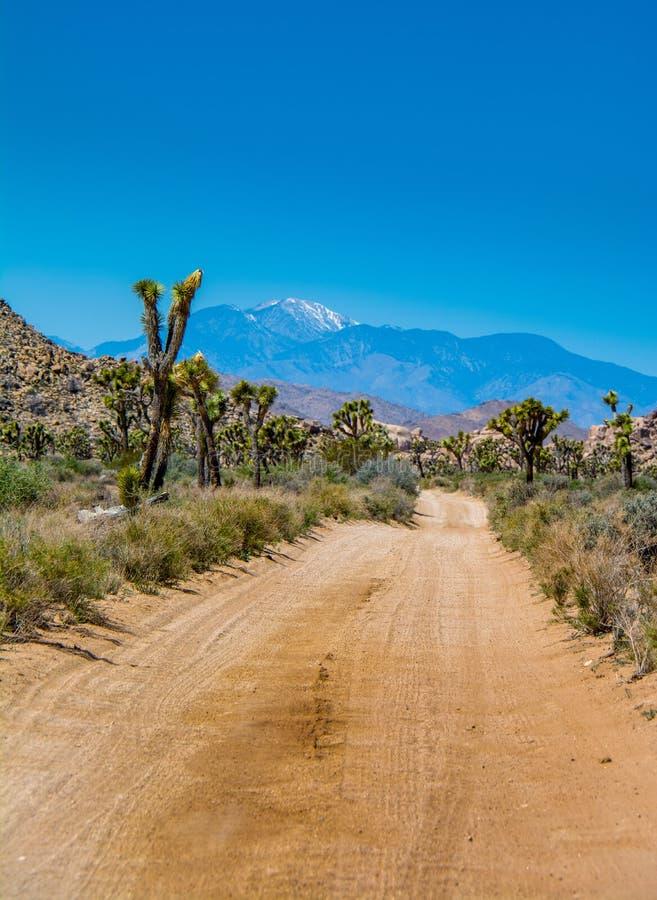Rastro del desierto a ninguna parte foto de archivo libre de regalías