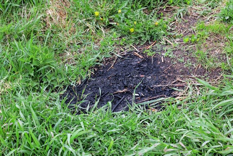 Rastro del fuego en la hierba verde foto de archivo libre de regalías
