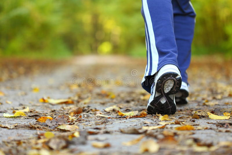 Rastro del país cruzado de la mujer que recorre en bosque del otoño fotos de archivo libres de regalías