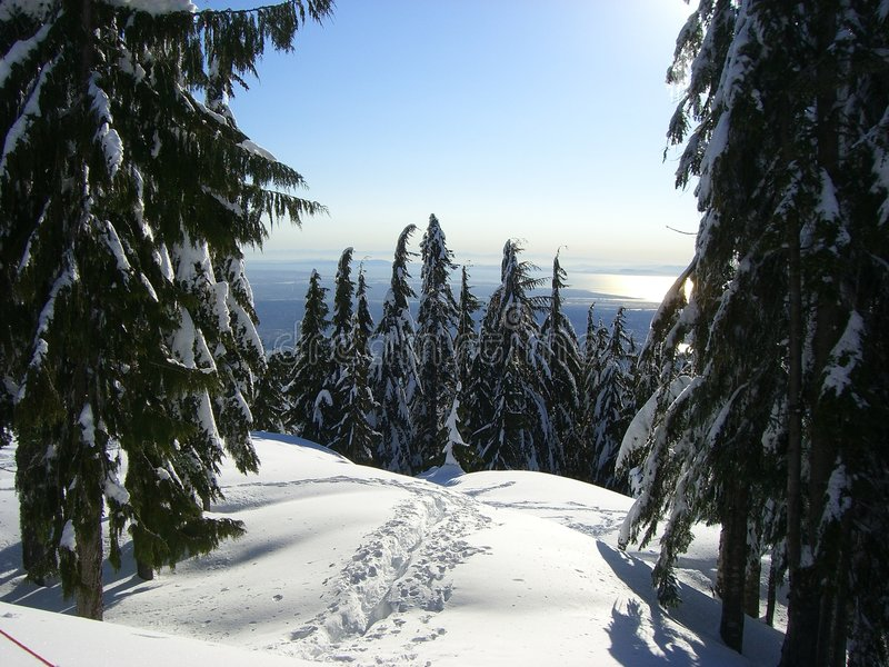 Rastro en la nieve foto de archivo