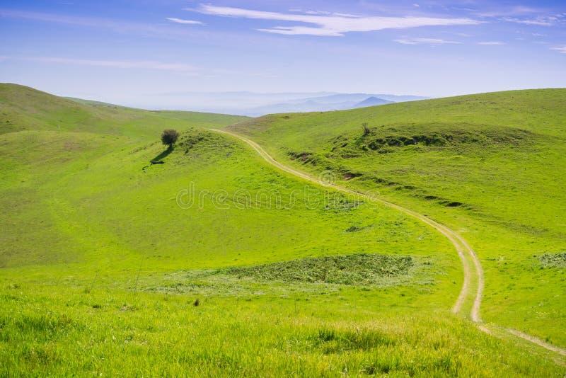 Rastro en las colinas verdes de la bahía del sur, área de la Bahía de San Francisco, San Jose, California imagenes de archivo