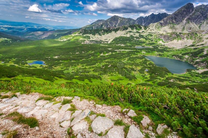 Rastro estrecho en las montañas fotografía de archivo