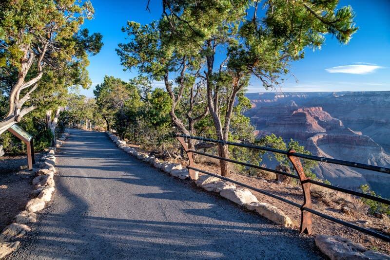 Rastro hermoso con la opinión de Grand Canyon en la oscuridad fotografía de archivo libre de regalías