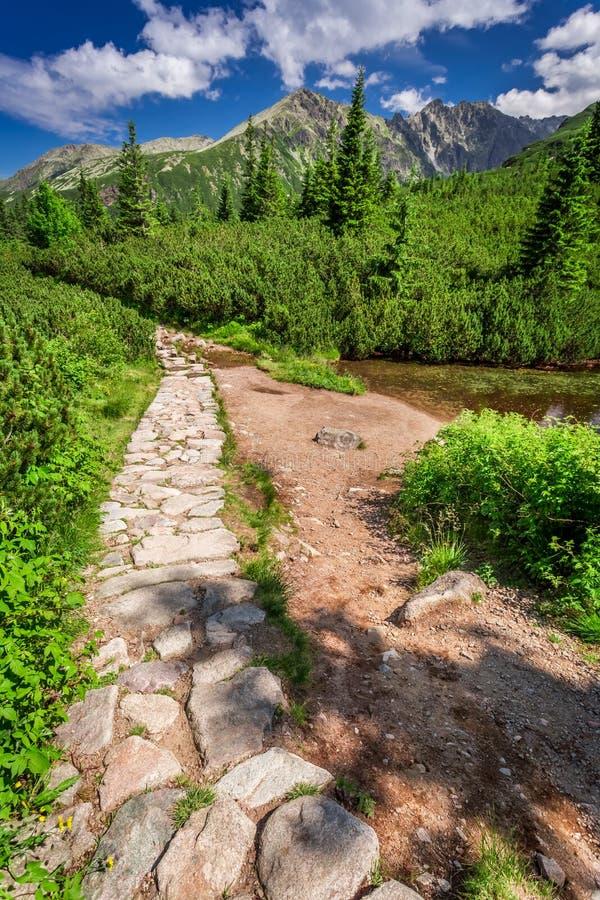 Rastro pedregoso en las montañas fotos de archivo