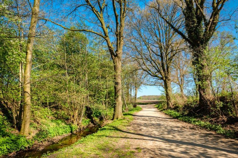 Rastro que camina holandés a lo largo de campos verdes, de bosques y de un río fotos de archivo
