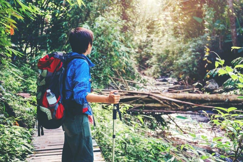 Rastro turístico que camina en el hombre del viajero del bosque con cr de la mochila imágenes de archivo libres de regalías