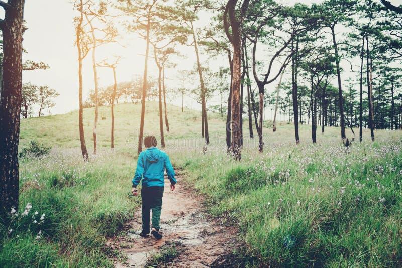 Rastro turístico que camina en el hombre del viajero del bosque con cr de la mochila fotos de archivo