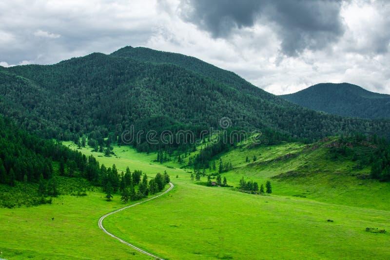 Rastro verde que lleva a las montañas fotografía de archivo