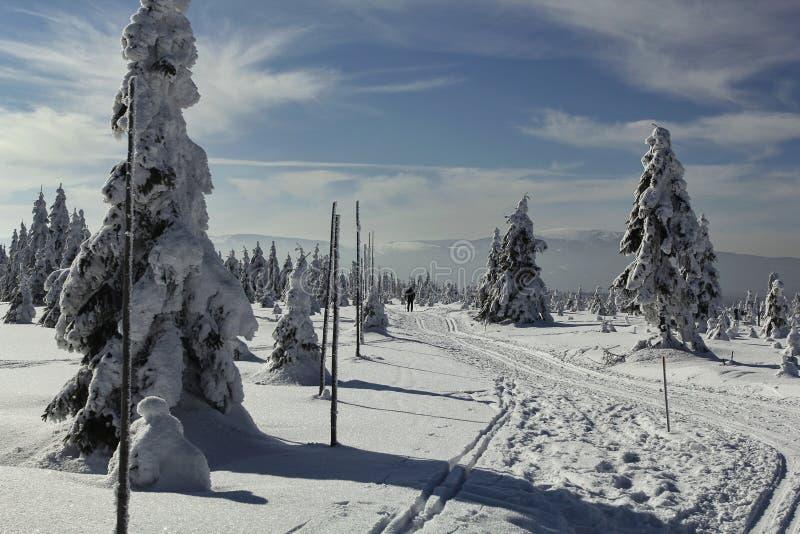 Rastros a campo través del esquí debajo del Kralicky Sneznik fotos de archivo