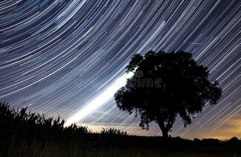 Rastros de la estrella de Perseids fotos de archivo libres de regalías