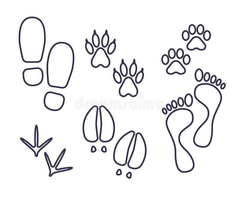 Rastros de ser humano y amimals, pistas del esquema, ensayos del gato, perro, pájaro, vaca, humana foto de archivo