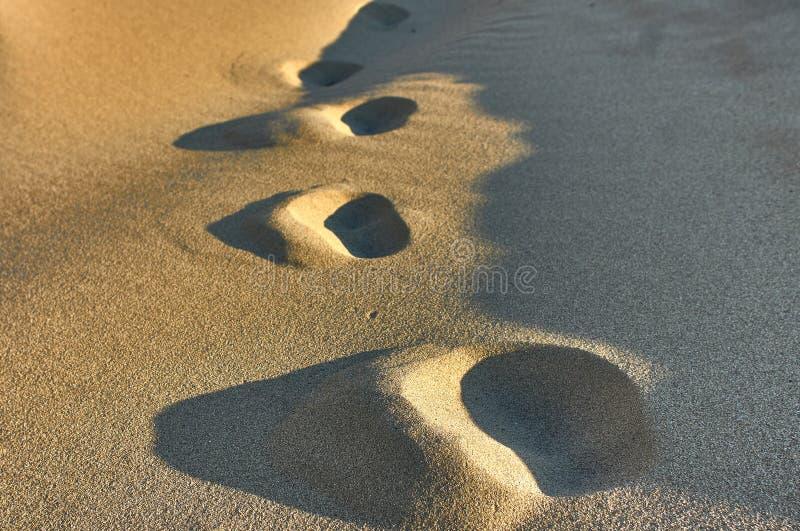 Rastros en la arena de la playa imagen de archivo