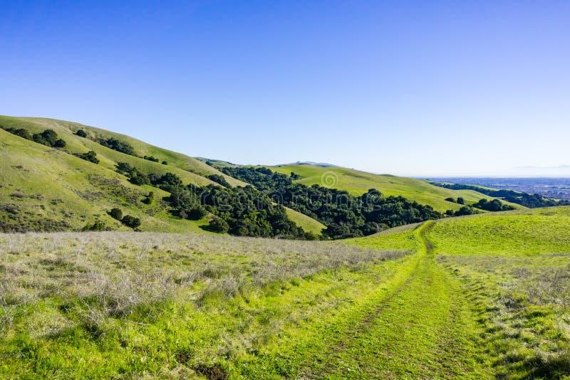 Rastros en las colinas verdes de la bahía del este, área de la Bahía de San Francisco, Hayward, California foto de archivo