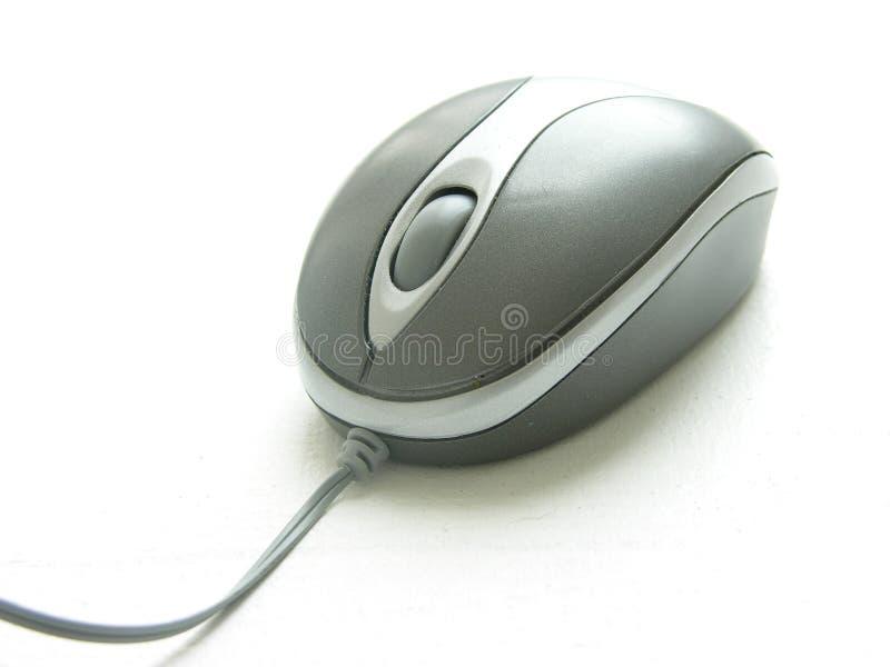 Download Ratón foto de archivo. Imagen de electrónico, ratón, técnico - 192412