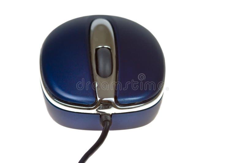 Ratón azul del ordenador fotografía de archivo libre de regalías