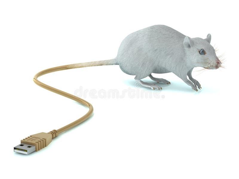 Download Ratón con la cola del USB stock de ilustración. Ilustración de cola - 27635382