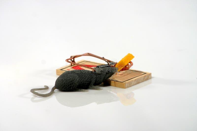 Ratón en desvío fotos de archivo
