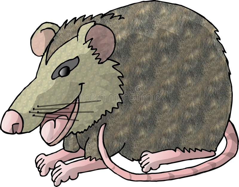 Rat illustration libre de droits
