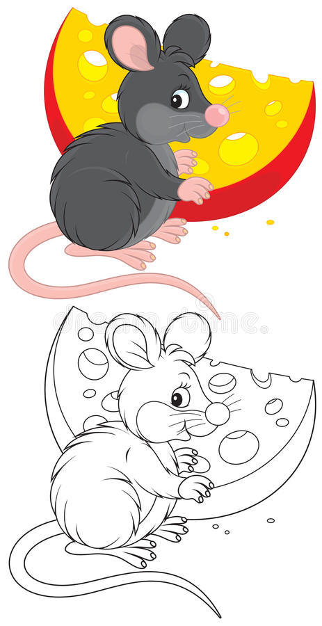 Rat And Cheese Royalty Free Stock Images