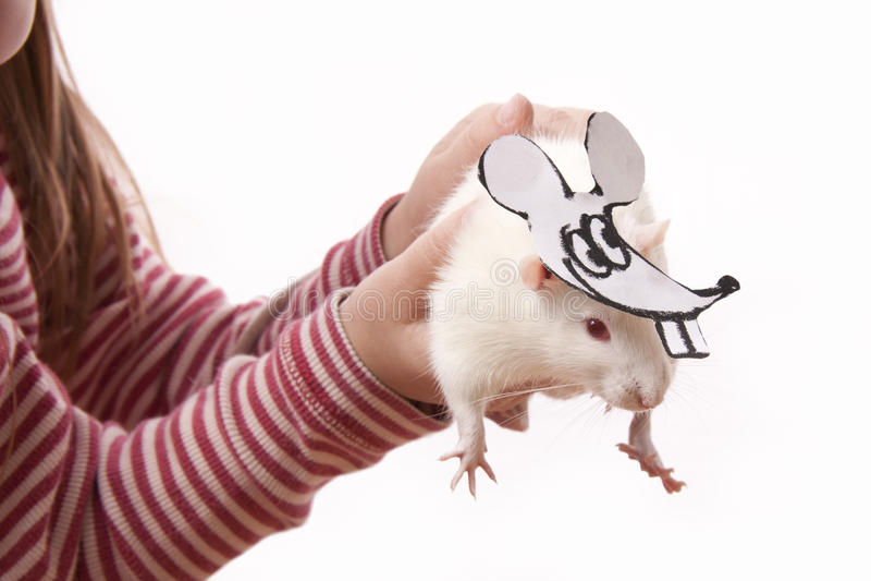 Rat de prise de childl de mains dans un masque photo stock