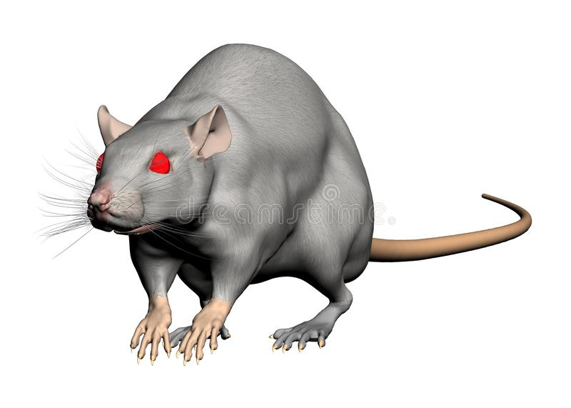 Download Rat isolated stock illustration. Image of look, gray - 14626552
