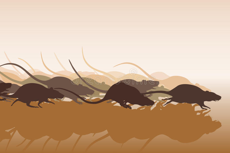 Download Rat race stock vector. Image of rats, competition, horde - 33310142