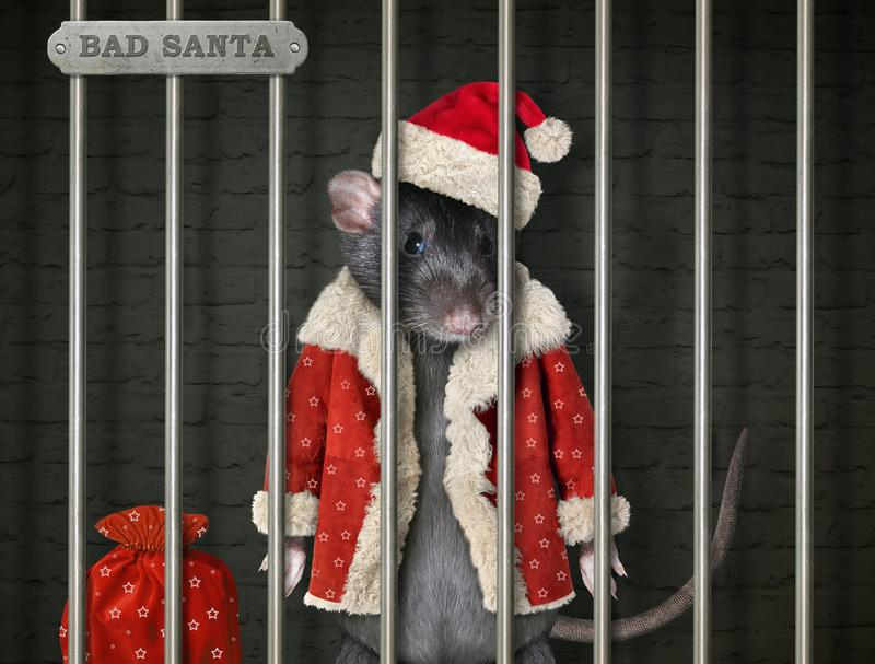 Rat in Santa Claus outfit in prison. The black rat in a Santa Claus suit with the red sack of gifts is behind bars in the prison royalty free stock photo