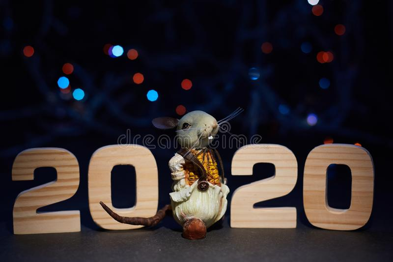 The rat sits on black glowing background with wooden numbers 2020. Symbol of the year, new year, christmas royalty free stock image
