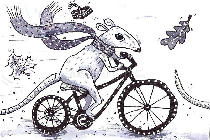 Rat sur le vélo illustration stock