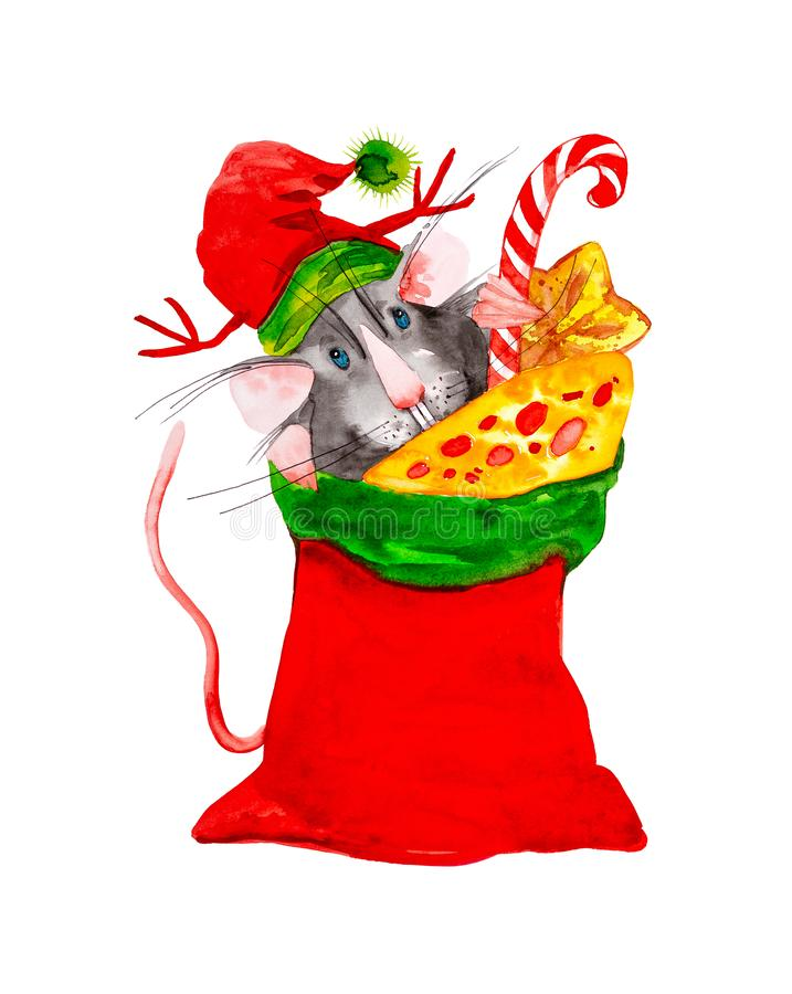 Rat symbol of the new year 2020 in the cap of Santa Claus hid in a red bag with gifts of cheese,sweets and candy. Watercolor vector illustration