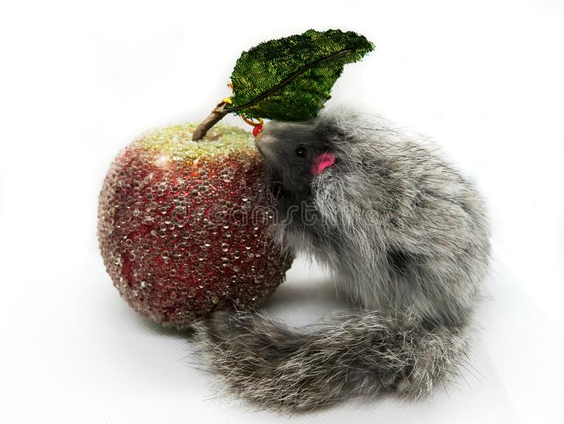 The rat is a symbol of the new year 2020 is sitting near the toy bright apple. New year mood.Christmas card. Happy New royalty free stock photography