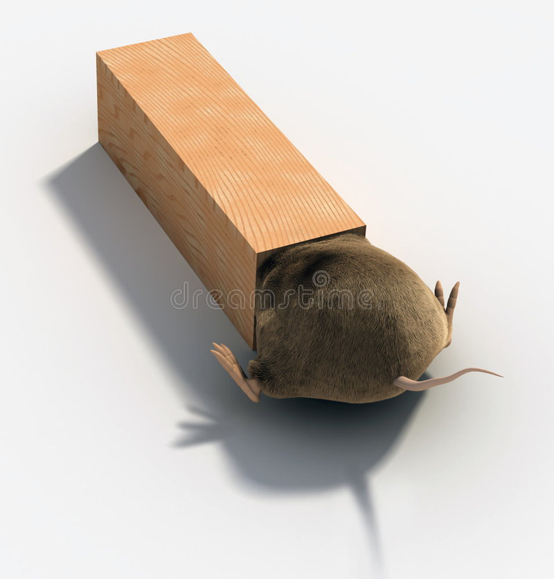Rat Trap stock illustration
