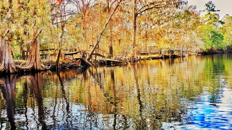 Rata del río foto de archivo libre de regalías