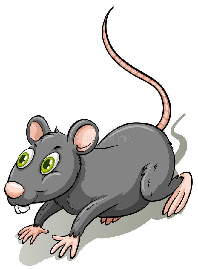 Rata gris ilustración del vector