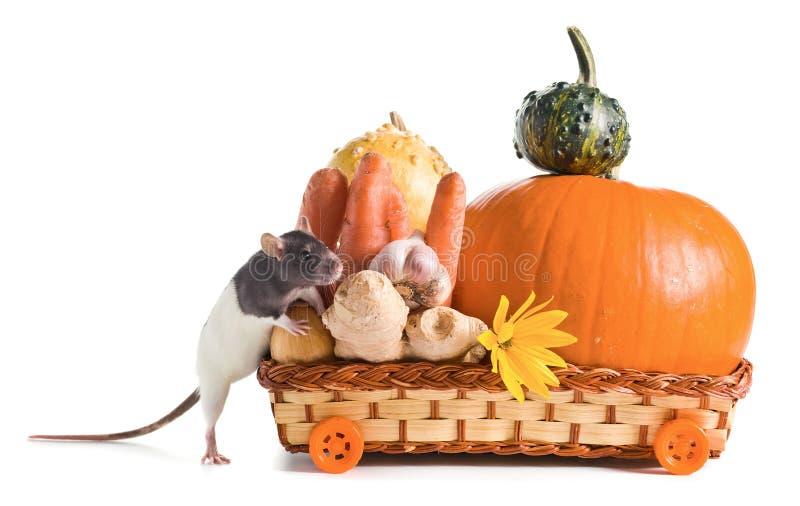 Rata y verduras
