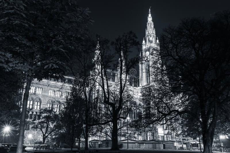 Rathaus вены на ноче Здание ратуши стоковая фотография rf