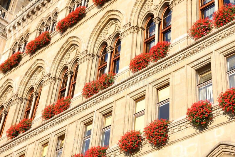 Rathaus w Wiedeń, Austria fotografia stock