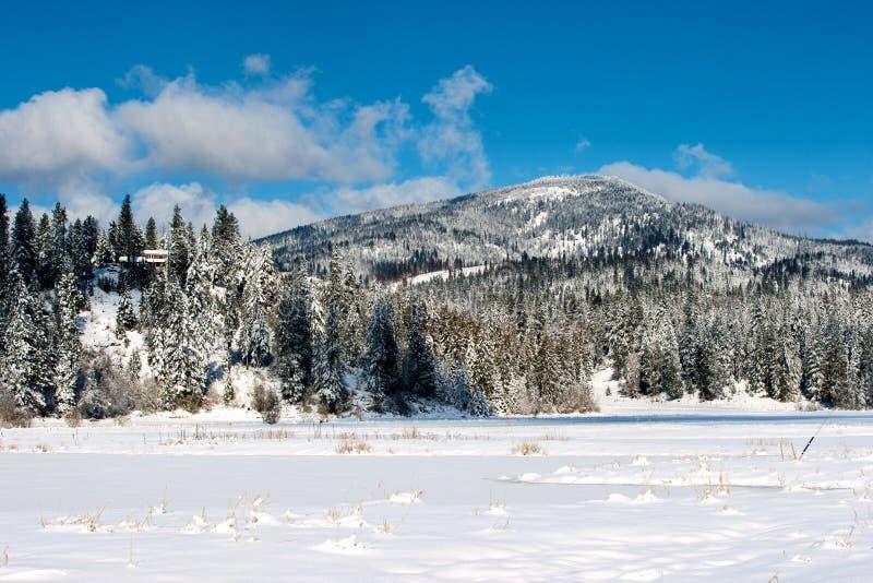 Rathdrum mountain in winter. stock photo