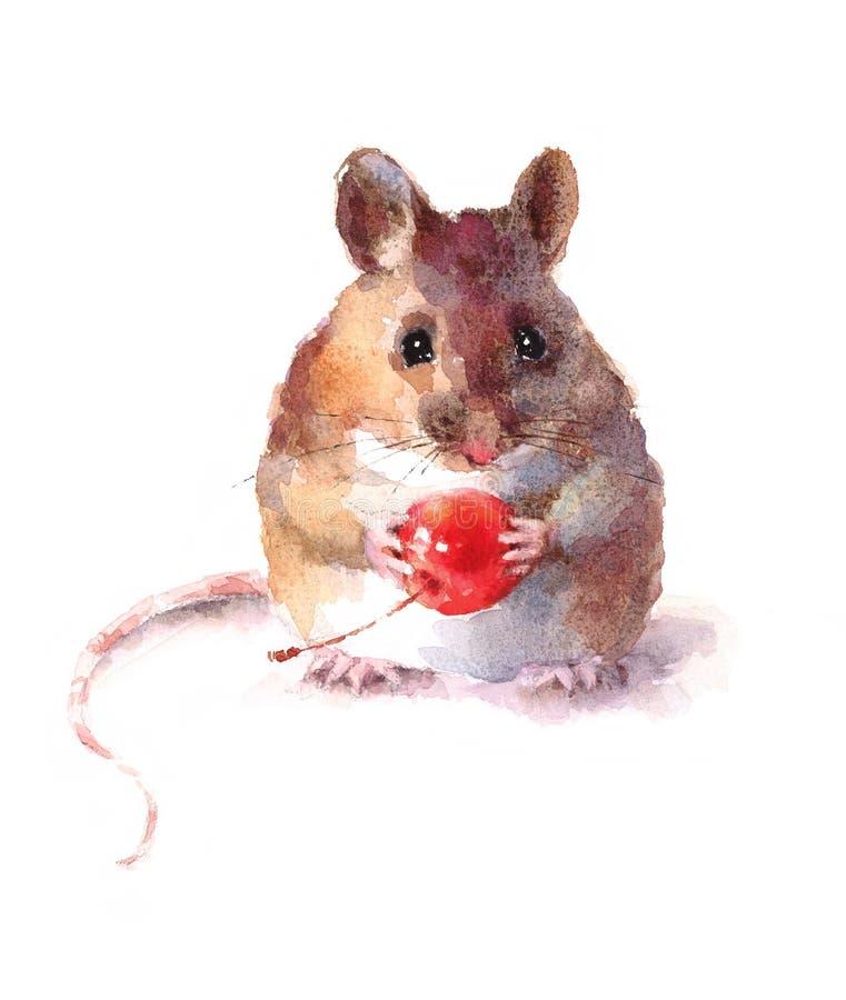 Rato bonito que mantém Berry Watercolor Animal Illustration Hand Painted isolado no fundo branco ilustração stock