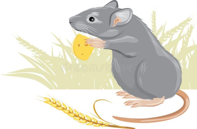Rato com uma parte de queijo e de spikelet ilustração stock