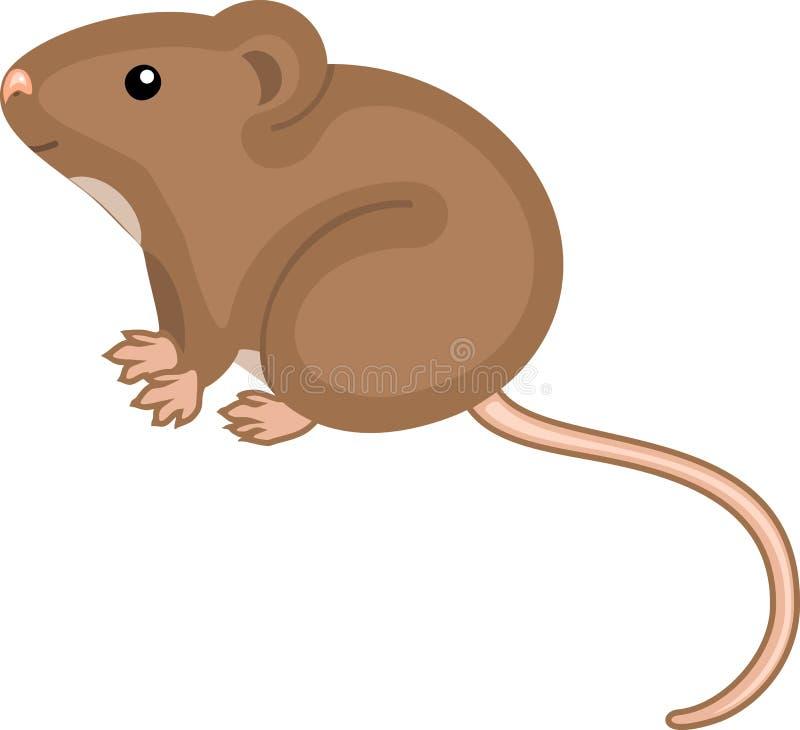Rato de casa bonito do marrom dos desenhos animados no fundo branco