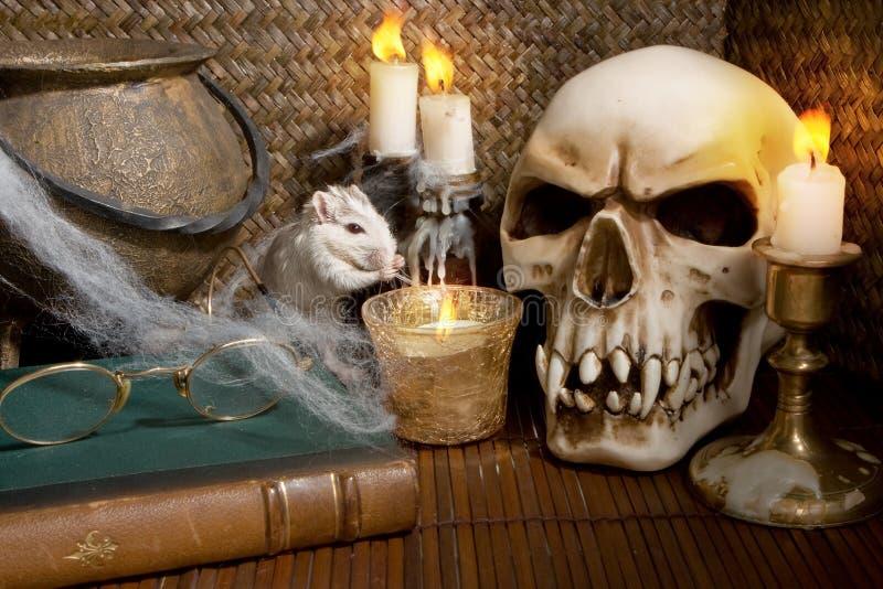 Rato de Halloween imagem de stock royalty free