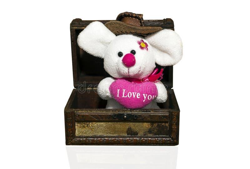 Rato do luxuoso na caixa foto de stock