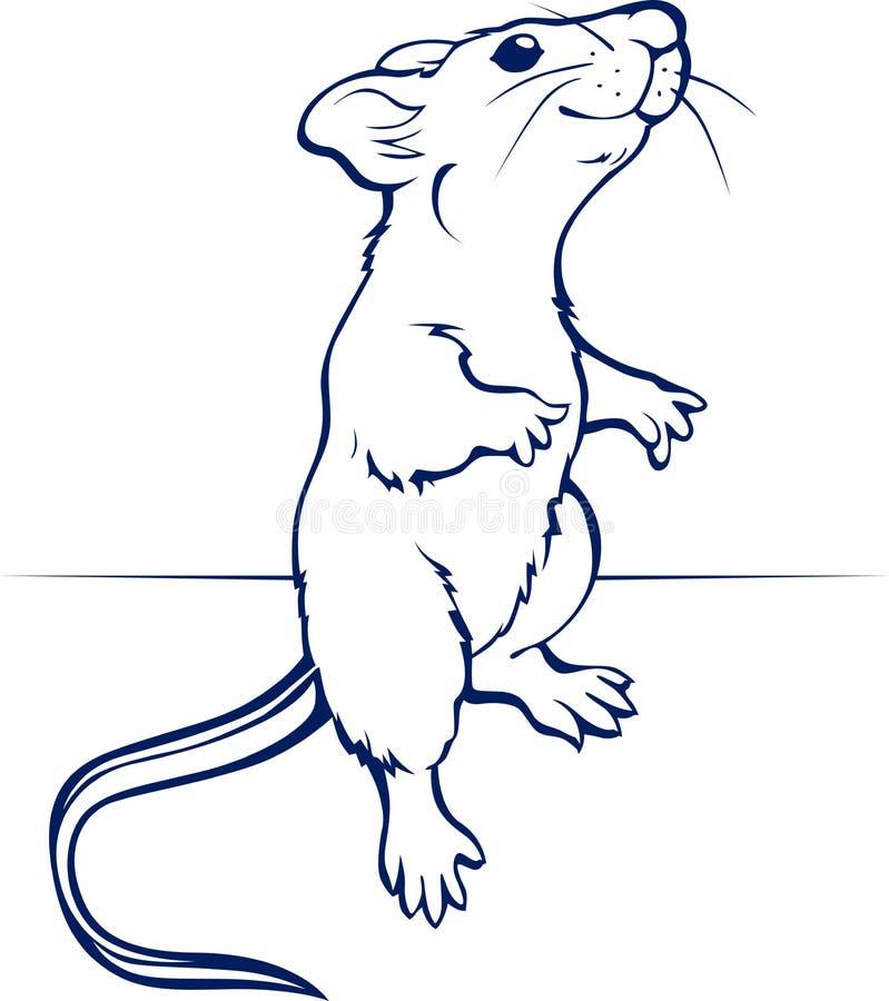 Rato ou rato dos desenhos animados ilustração royalty free