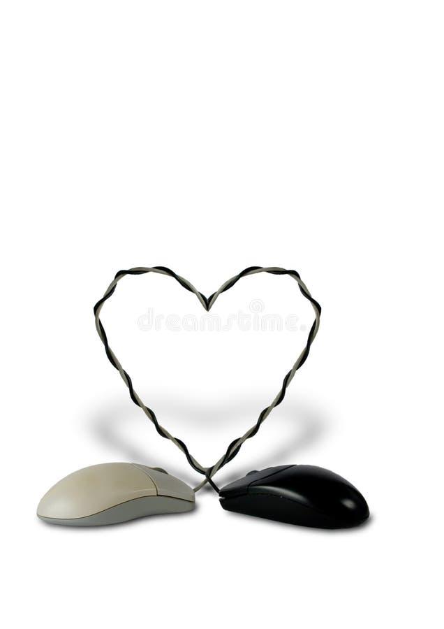 Ratones de la PC caidos en amor imagen de archivo libre de regalías