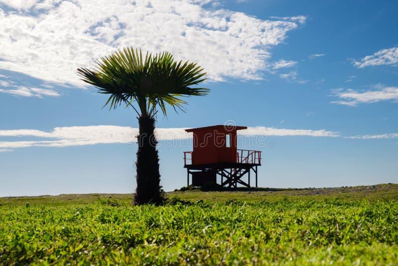 Ratownika wierza i drzewko palmowe sylwetki fotografia royalty free