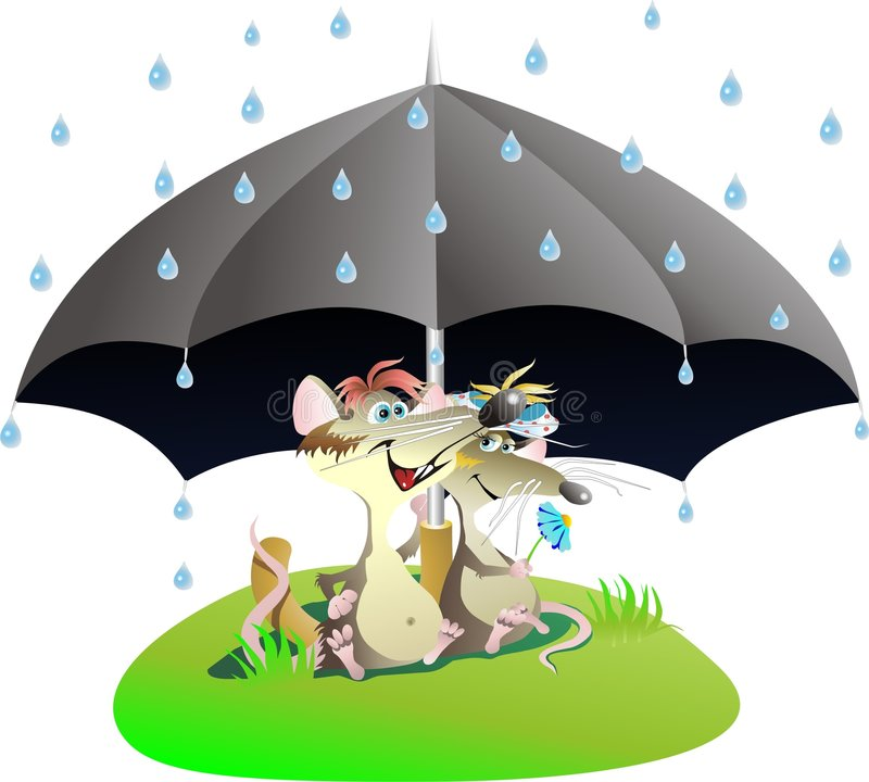 Download Rats Stock Photos - Image: 5093253