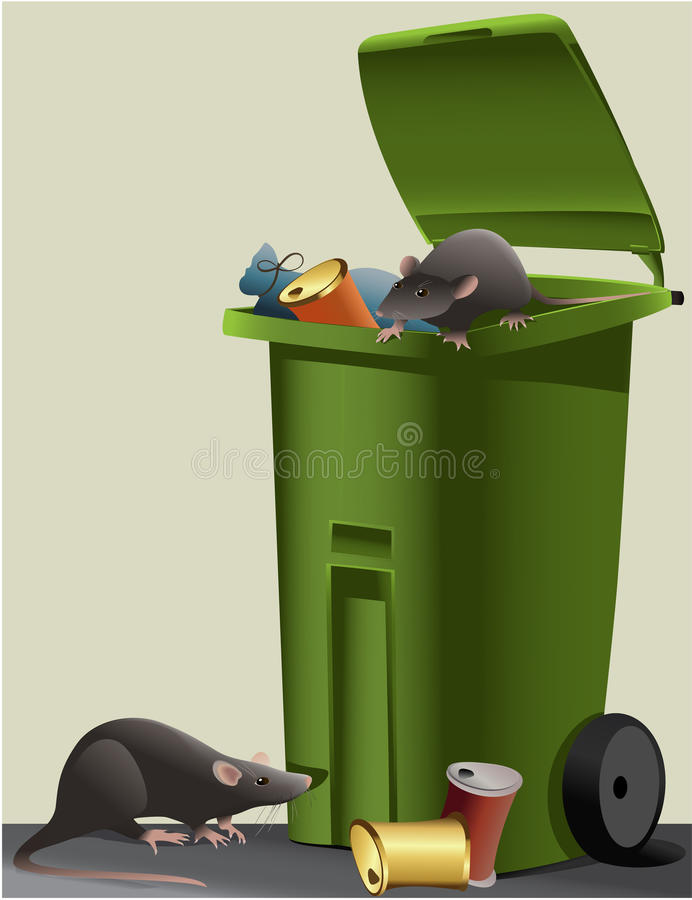 Rats in the rubbish dump stock illustration