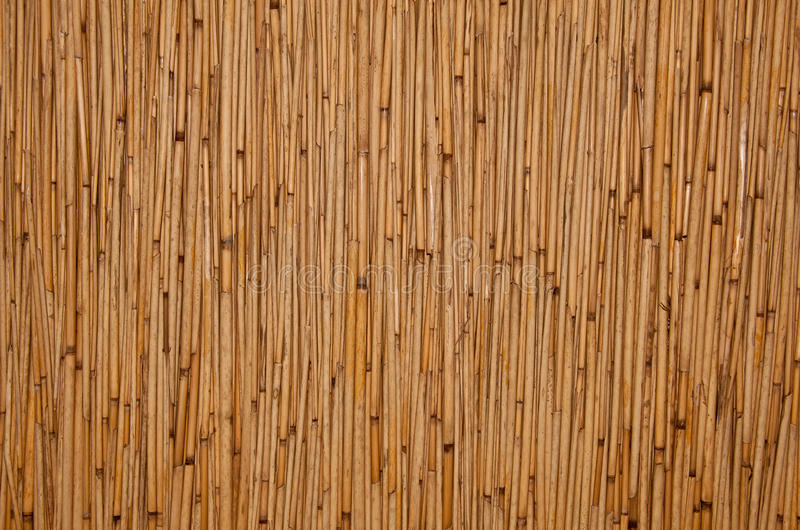 Download Rattan texture stock photo. Image of details, copyspace - 20651112